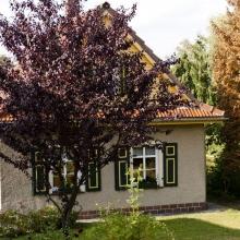 20120917_werbellinsee_0039