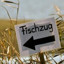 fischzug_blumberger_muehle_12_