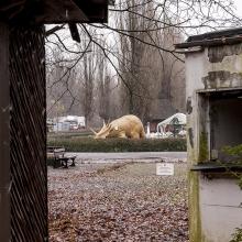 27nov12_veb_kulturpark_30_
